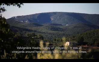 ROMAIN STAROS | Gregory Guillaume Ardéche - Portraits of Winemakers France0 (13)