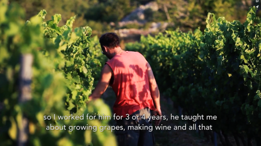 ROMAIN STAROS | Gregory Guillaume Ardéche - Portraits of Winemakers France0 (2)