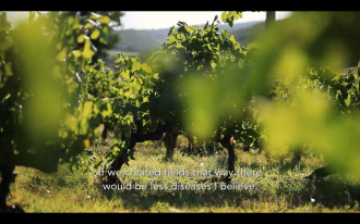 ROMAIN STAROS | Gregory Guillaume Ardéche - Portraits of Winemakers France0 (21)