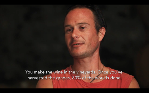 ROMAIN STAROS | Gregory Guillaume Ardéche - Portraits of Winemakers France0 (24)