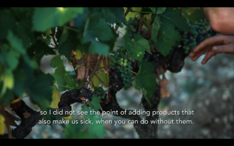 ROMAIN STAROS | Gregory Guillaume Ardéche - Portraits of Winemakers France0 (5)