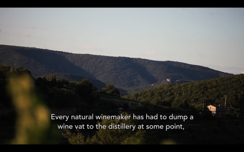 ROMAIN STAROS | Gregory Guillaume Ardéche - Portraits of Winemakers France0 (8)