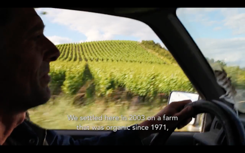 ROMAIN STAROS | Marie & Vincent Tricot - Winemakers France0 (4)