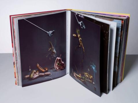 Visual Feast Book_Tuukka Koski_Thomas Treuhaft.food photography 2